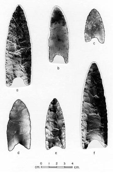 Paleoindian points from New Brunswick, Nova Scotia and Prince Edward Island