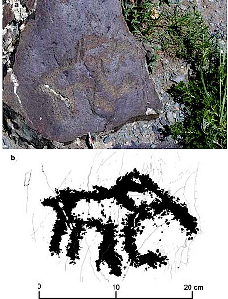 The Paleolithic rock art image of the mammoth calf discovered at Baga-Oygur III in 2017. (Dmitry Cheremisin et al. / Siberian Times)