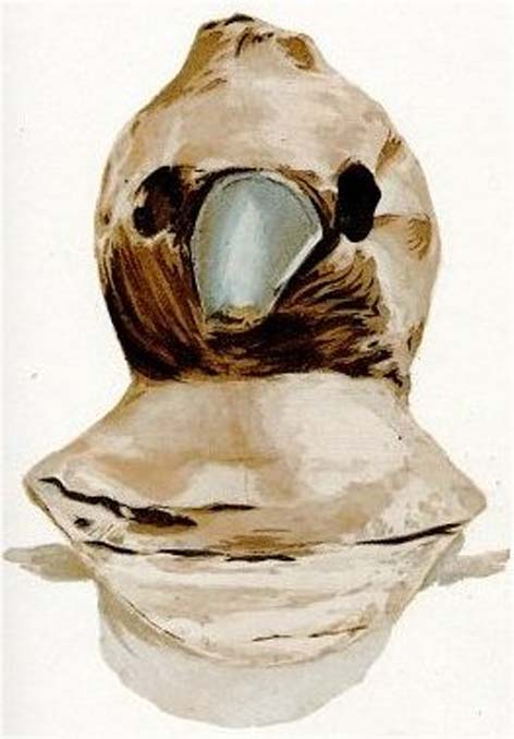 Plague doctor mask from 1630 (circa 1900)