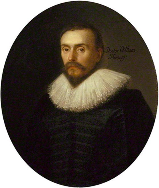 Portrait of William Harvey, physician to King Charles I. (Public Domain)
