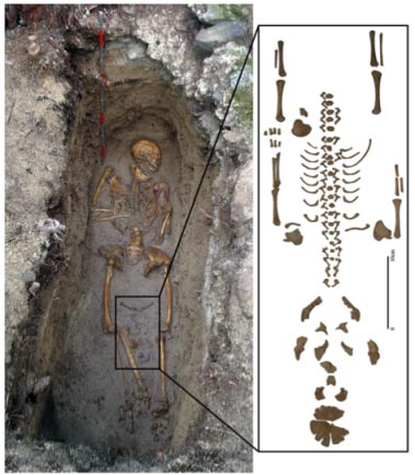 Potential Coffin Birth from Appleby et al. 2012