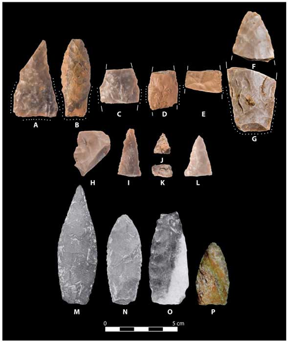 Pre-Clovis projectile points from the Debra L. Friedkin site and other sites in North America. (Image: Science Advances)