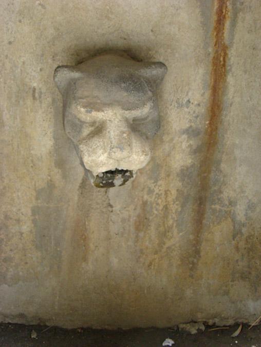 Puma head sculpture at Machu Picchu