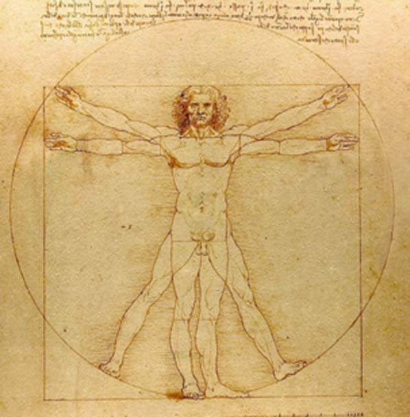 The REAL Da Vinci Code: Vitruvian Man. The proportional relationship of the parts reflects universal design.