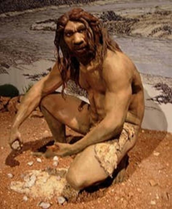 Reconstruction of Homo Heidelbergensis.