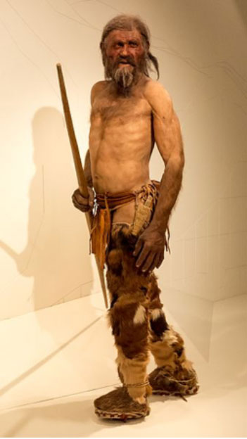 Reproduction of Ötzi, South Tyrol Museum of Archaeology