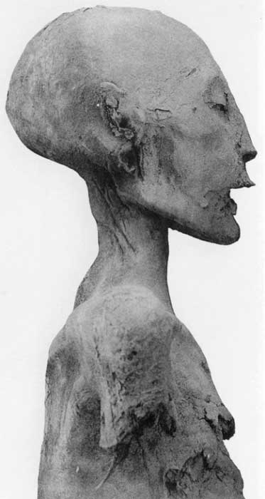 Right profile view of the 'Younger Lady' mummy from KV35. Over the years, experts have proposed various names, ranging from Nefertiti to Sitamun, to identify this person. Wikimedia Commons. (Photo: G. Elliot Smith)