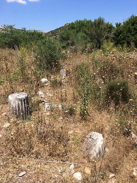Ruins of fluted columns at the archaeological site of Bargylia. (Hwhorwood/CC BY SA 4.0)