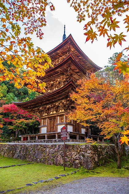 Saimyoji temple pagoda. (Yuta1127 /Adobe Stock)