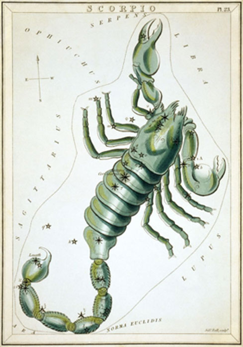Scorpius as depicted in Urania's Mirror, a set of constellation cards published in London (circa 1825). (Public Domain)