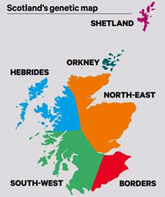 Scotland is divided into six main clusters of genetically similar individuals. (University of Edinburgh / Fair Use)