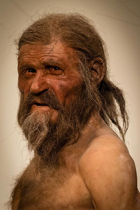 Sculpture of what Ötzi may have looked like when he was alive.