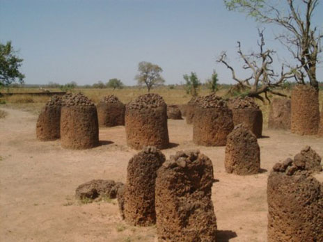 A Senegmbian Stone Circle at Wassu