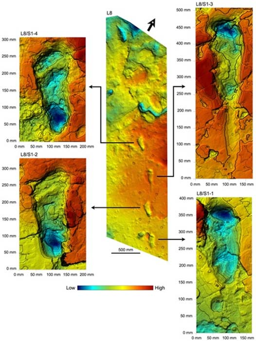Shaded 3D photogrammetric elevation model of test-pit L8 and close-up of the best-preserved tracks of the male S1 with contour lines