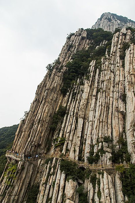 Shuce Cliff is a famous natural landmark on Mount Song, Henan, China, where the word 'Shuce' means 'books' in Chinese. This vertical upright was formed approximately 1.8 billion years ago by an intense orogeny - Zhongyue Movement, and monks would ascend and descend the rock on their hands and knees testing and developing their stamina, endurance and resistivity to pain. (CC BY-SA 4.0)