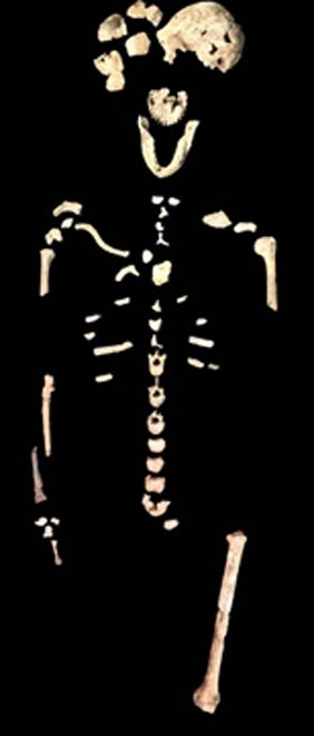 Skeletal material from Lesedi chamber in newly published research
