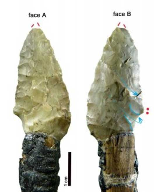 Stone arrow heads found with Otzi's mummified body. (Image: Wierer et al)