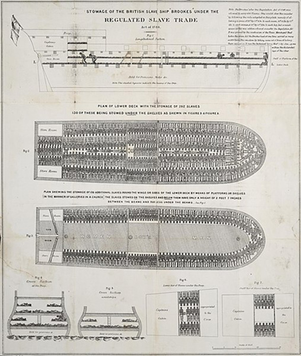 Stowage of the British slave ship Brookes under the regulated slave trade act of 1788. (Public Domain)