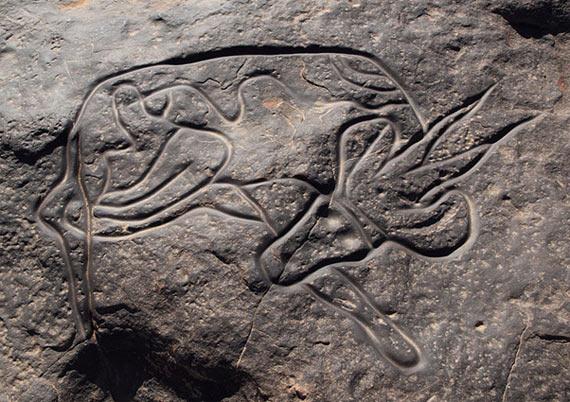 Tassili n'Ajjer Petroglyph of Antilope