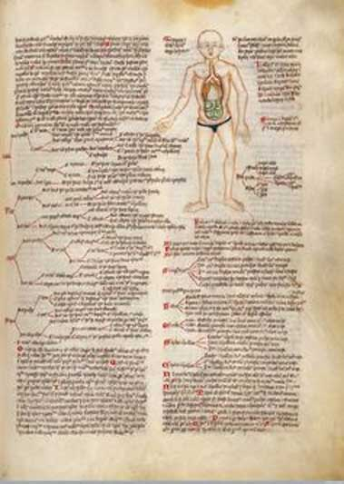 Text and tabular of humours and fevers, according to Galen, c.1420. In MS 49 Wellcome Apocalypse, f.43r. Wellcome Library