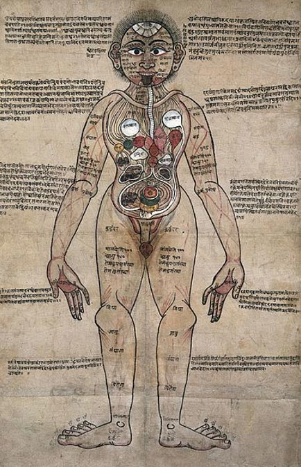The Ayurvedic Man, showing an Ayurvedic understanding of human anatomy in Nepalese and Sanskrit writing.