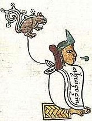 The Aztec ruler Ahuitzotl (here written Ahuiçuçin = Ahuitzotzin, an honorific form), in the Codex Mendoza. (Public Domain)