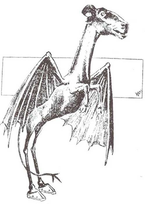 The Jersey Devil, Philadelphia Bulletin, January 1909. ( Public Domain )