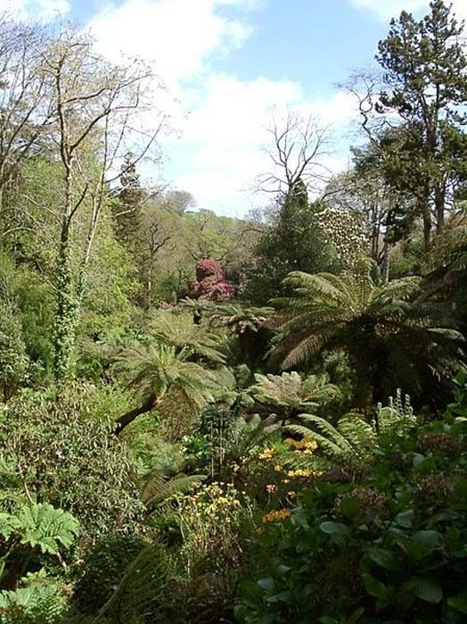 'The Jungle' at the Lost Gardens of Heligan. (Melanie Nakisa/CC BY SA 3.0)