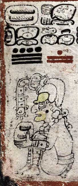 The Maya creator diety Itzamna, cacao-collecting. From the Dresden Codex: 6c-7c Frame: 2. Image courtesy of Vail, Gabrielle, and Christine Hernández (2013) The Maya Codices Database, Version 4.1 (Image: mexicolore)