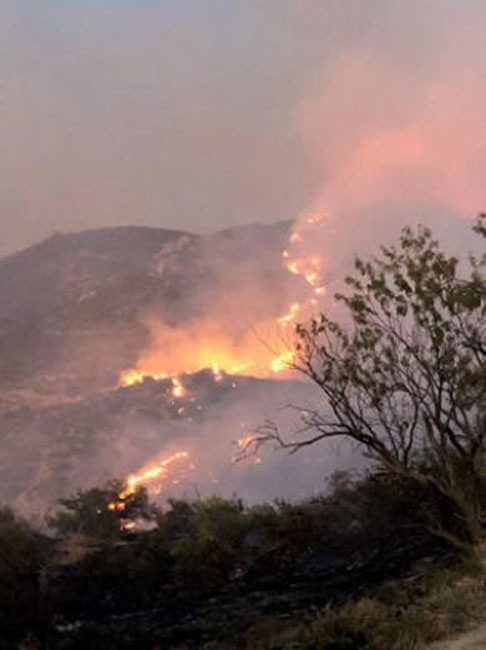 The Woodbury Fire, which threatens the ancient tree, has reached an extent of almost 80,000 acres. (US Forest Service Tonto National Forest / Facebook)