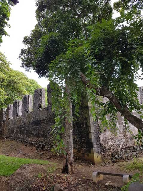 The fortified walls of La Loge. (Author provided)