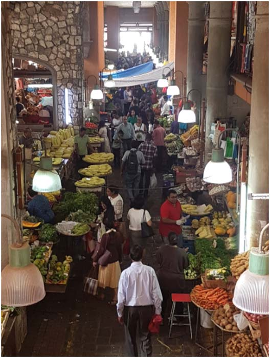 The fresh fruit and vegetable market in Port Louis (Image: Courtesy of the author)