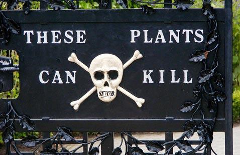 The gates to the Poison Gardens