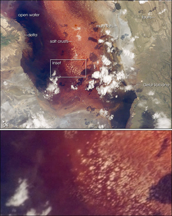 "The southern half of Lake Natron (top). Fault scarps and the Gelai Volcano can also be seen. Numerous near-white salt-crust ""rafts"" pepper the shallowest parts of the lake (inset – bottom). (NASA / Public Domain)"