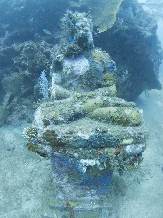 The statues had been submerged for about 6 years when these pictures were taken in 2011