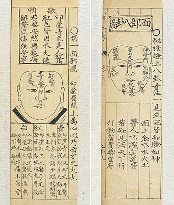Two Qing Chinese paediatric face diagnosis charts.