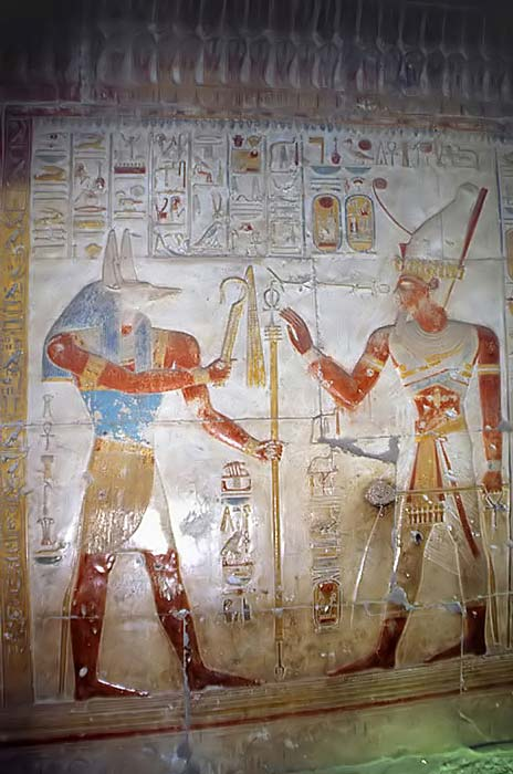 Wepwawet giving scepters to Seti I, found at Temple of Seti I. Wepwawet is often depicted as a bluish or grayish haired wolf or jackal to avoid confusion with Anubis.