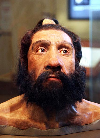 A model of an adult Neanderthal male head and shoulders on display in the Hall of Human Origins in the Smithsonian Museum of Natural History in Washington, D.C.