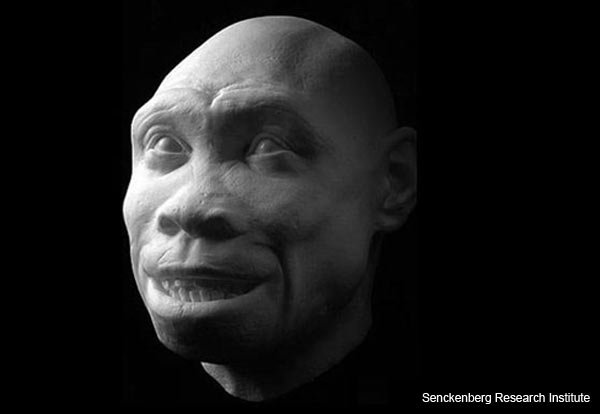 """Turkana Boy"" - Homo ergaster - Facial Reconstruction"