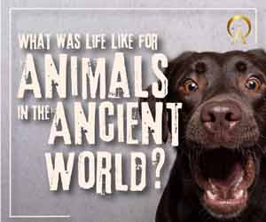 https://shop.ancient-origins.net/collections/ebooks/products/animals-in-the-ancient-world