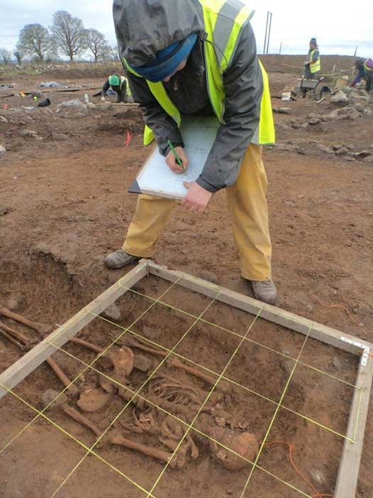 An archaeologist examining a skeleton found at the ringfort at Ranelagh, Co. Roscommon, Ireland.