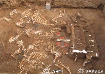 Archaeologists found two carriages, each pulled by 6 horses