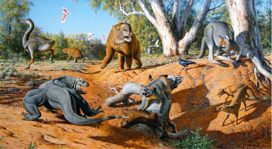 Australian megafauna