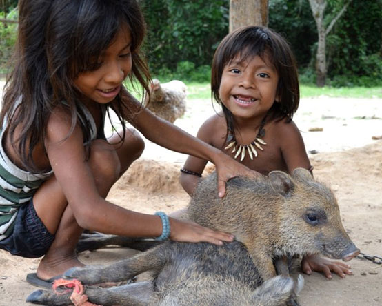 Two children from the Awá tribe