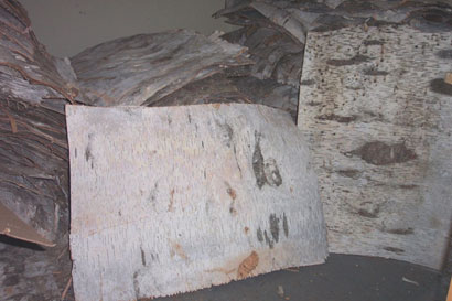 Sheets of birch bark