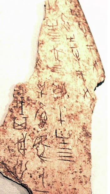 Shang Dynasty oracle bone script from Henan, showing the first form of Chinese writing
