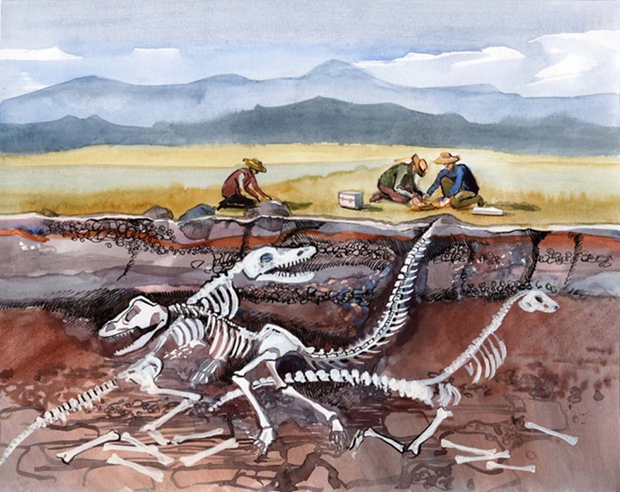 Fossil site preserves animals killed within minutes of 66-million-year-old meteor impact.