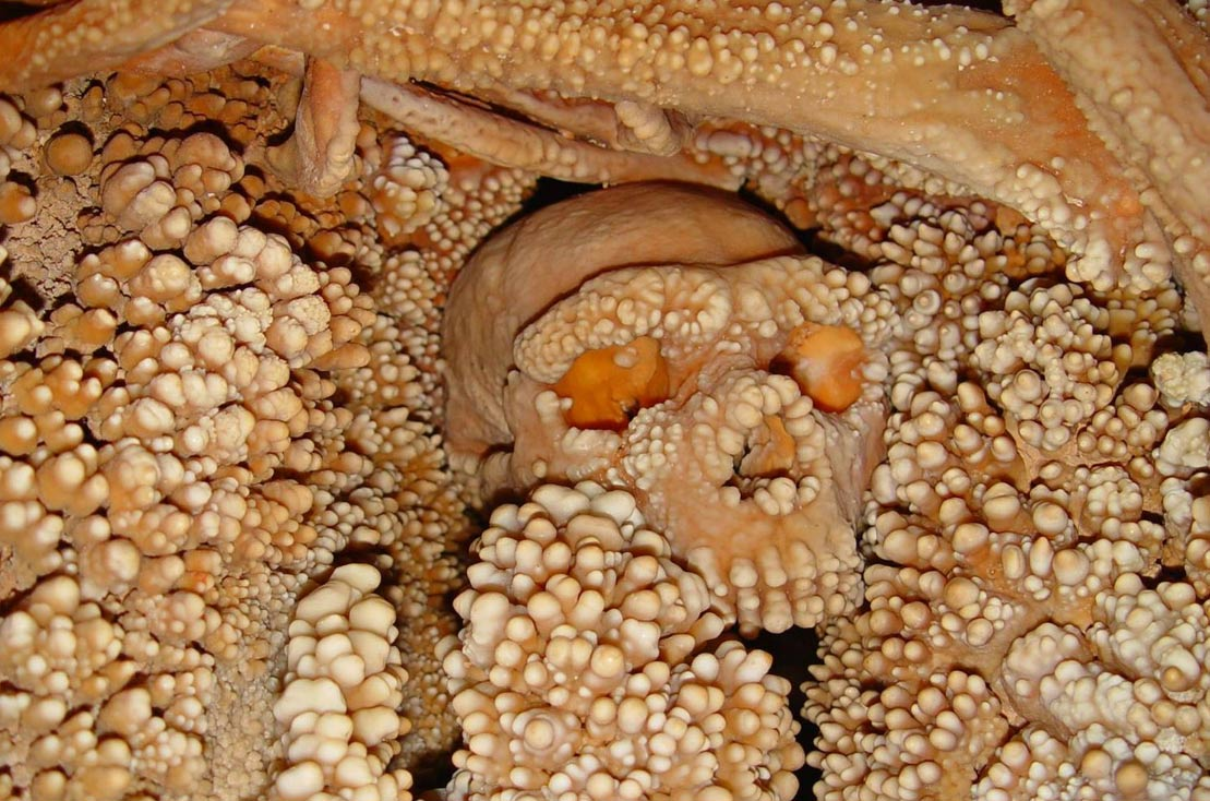 Altamura Man, surrounded by limestone deposits in the Grotta di Lamalunga