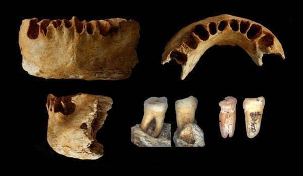 Ancient Human Fossils found in China - Zhirendong cave