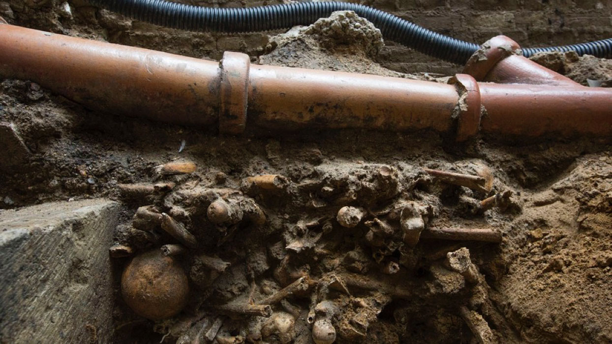 Skeletons Found Under Blocked Toilet